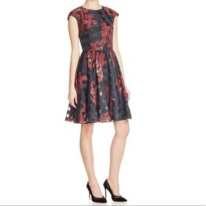 Ted Baker London Hemora Floral Mini Dress